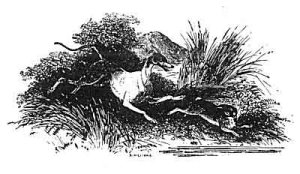 Cerredwen chasing Gwydion - an old illustration from The Mabinogi