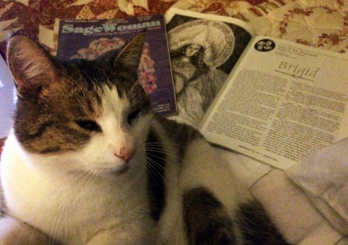 Sagewoman articles – cat not included – were my introduction to this versatile goddess.
