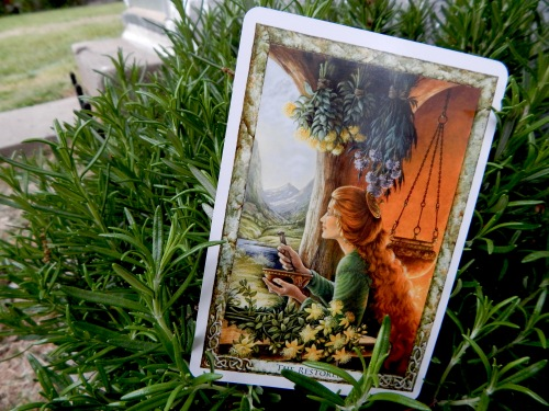 An herbal healer as shown in the Druid Plant Oracle deck. Image copyright – Will Worthington.