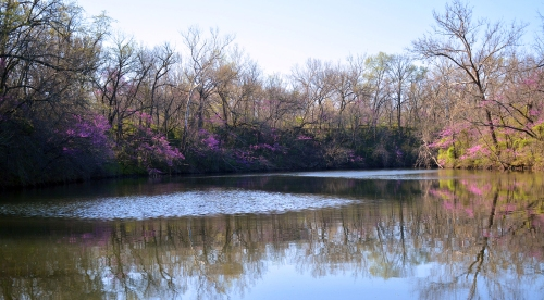 Originally a mined area, a creek has filled in many mining holes to form pretty ponds.