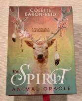 Spirit Animal cover